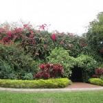 sunken gardens blog