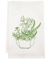 ag web owt-plant